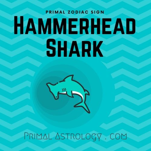 Primal Zodiac Sign of Hammerhead Shark
