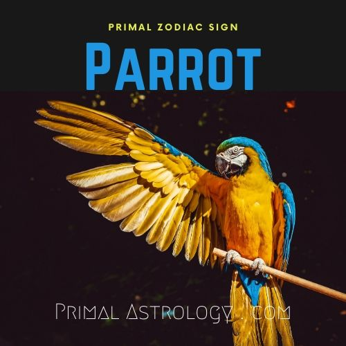 Primal Zodiac Sign of Parrot