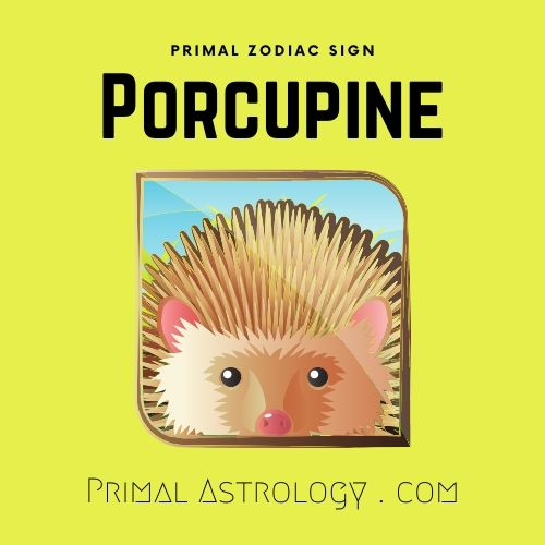 Primal Zodiac Sign of Porcupine