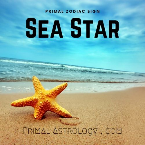 Primal Zodiac Sign of Sea Star