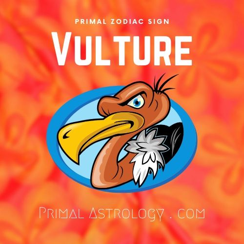 Primal Astrology Spirit Of The Vulture
