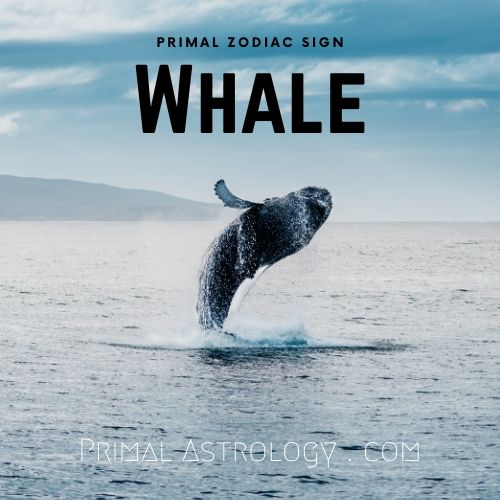 Primal Zodiac Sign of Whale