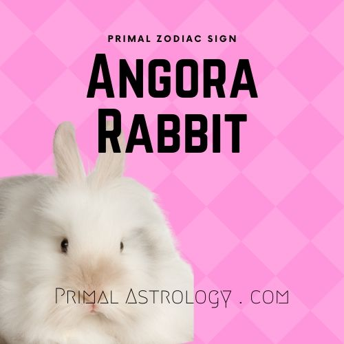 Primal Zodiac Sign of Angora Rabbit