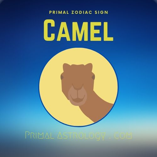 Primal Zodiac Sign of Camel