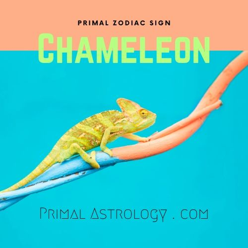 Primal Zodiac Sign of Chameleon