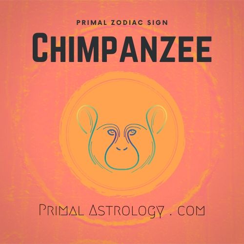 Primal Zodiac Sign of Chimpanzee
