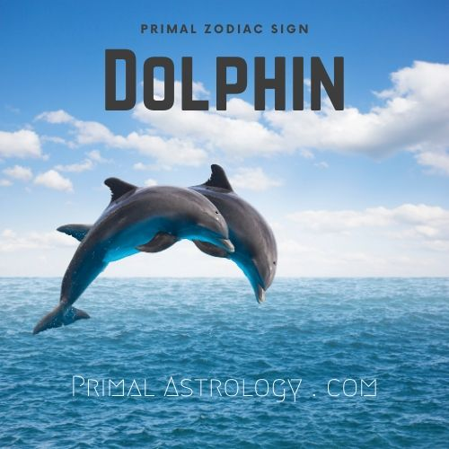 Primal Zodiac Sign of Dolphin