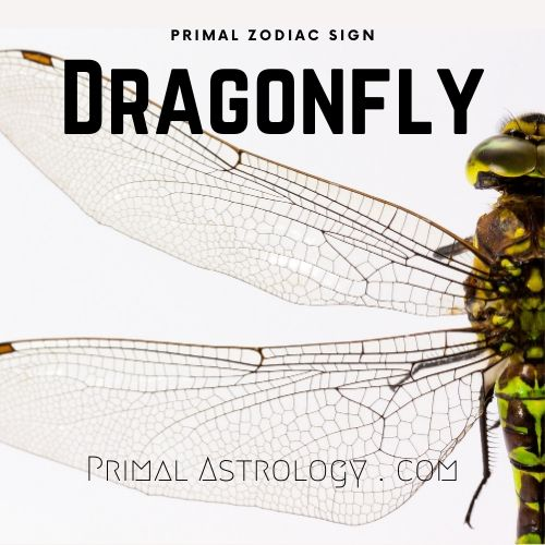 Primal Zodiac Sign of Dragonfly