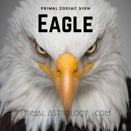 Primal Zodiac Sign of Eagle