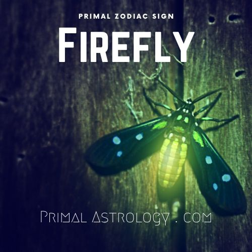 Primal Zodiac Sign of Firefly