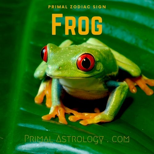 Primal Zodiac Sign of Frog