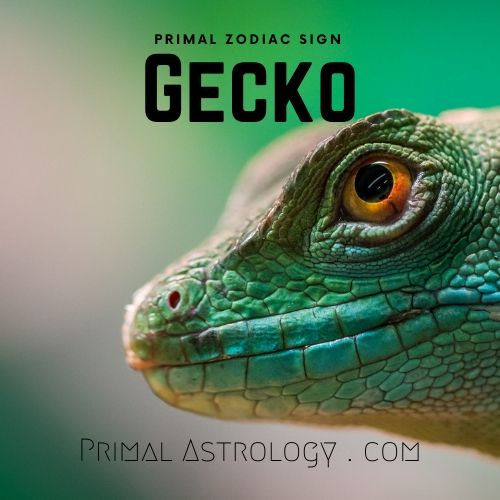 Primal Zodiac Sign of Gecko