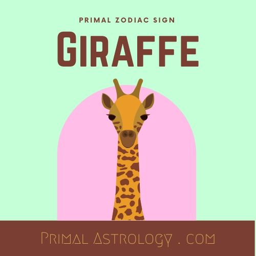 Primal Zodiac Sign of Giraffe