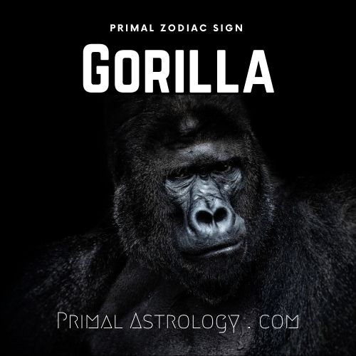 Primal Zodiac Sign of Gorilla