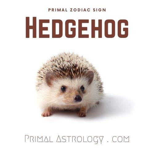 Primal Zodiac Sign of Hedgehog
