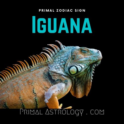 Primal Zodiac Sign of Iguana