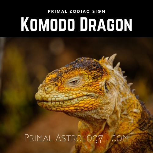 Primal Zodiac Sign of Komodo Dragon