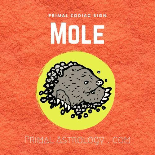 Primal Zodiac Sign of Mole