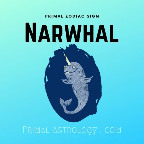 Primal Zodiac Sign of Narwhal