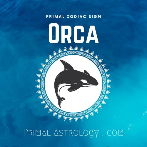 Primal Zodiac Sign of Orca
