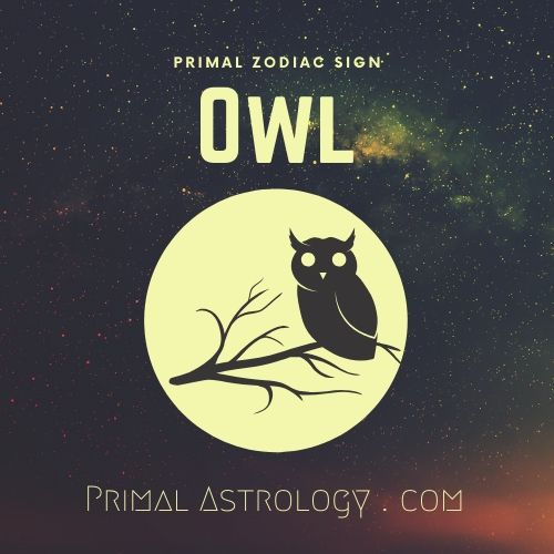Primal Zodiac Sign of Owl