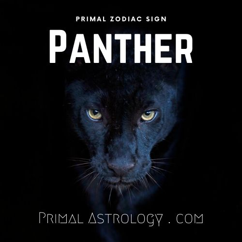 Primal Zodiac Sign of Panther