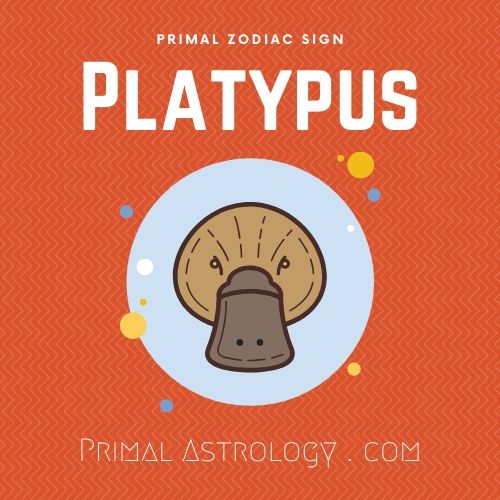 Primal Zodiac Sign of Platypus