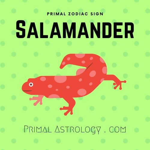 Primal Zodiac Sign of Salamander